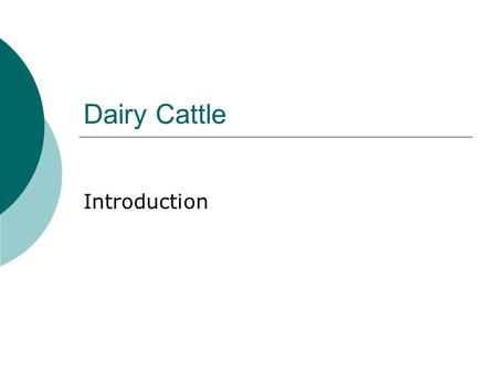 Dairy Cattle Introduction.