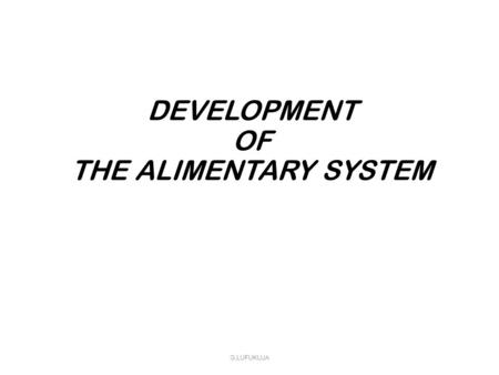 DEVELOPMENT OF THE ALIMENTARY SYSTEM