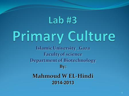 Islamic University _Gaza Faculty of science Department of Biotechnology By: Mahmoud W EL-Hindi 2013-2014 1.