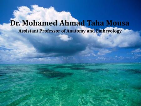 Dr. Mohamed Ahmad Taha Mousa Assistant Professor of Anatomy and Embryology.
