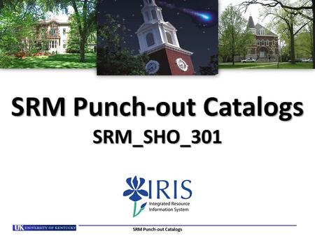 SRM Punch-out Catalogs SRM_SHO_301