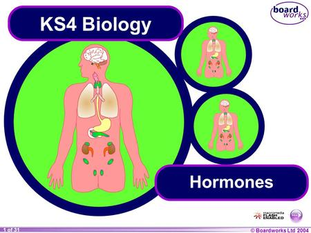 © Boardworks Ltd 2004 1 of 31 KS4 Biology Hormones.