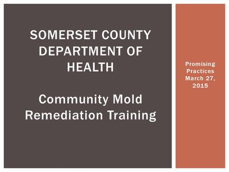 Promising Practices March 27, 2015 SOMERSET COUNTY DEPARTMENT OF HEALTH Community Mold Remediation Training.