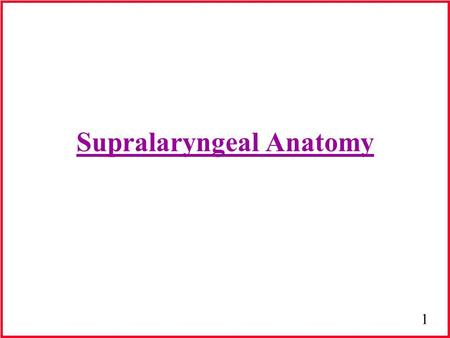 1 Supralaryngeal Anatomy. 2 Muscles of Face Facial muscles are devoid of facial sheaths (characteristic of skeletal muscle) Size, shape & extent of development.
