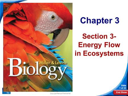 End Show Slide 1 of 33 Chapter 3 Section 3- Energy Flow in Ecosystems Copyright Pearson Prentice Hall.
