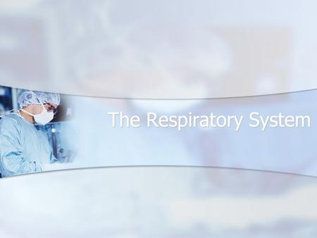 The Respiratory System. Respiratory System Includes the nasal cavity, pharynx, larynx, trachea, bronchi, bronchioles, alveoli, lungs, and pleura. Includes.