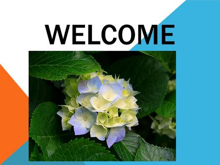 WELCOME. TEACHERS INTRODUCTION  SK.Abu jafor  Asst. Teacher  B.S.C. High School  Bagerhat  Mob: 01719032520.