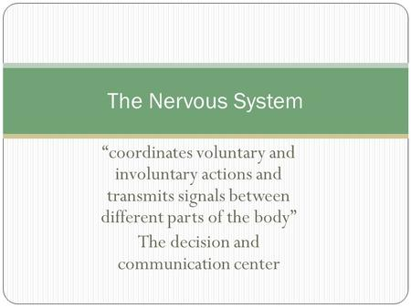 """coordinates voluntary and involuntary actions and transmits signals between different parts of the body"" The decision and communication center The Nervous."