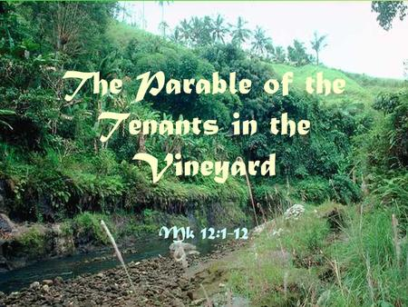 The Parable of the Tenants in the Vineyard Mk 12:1-12.