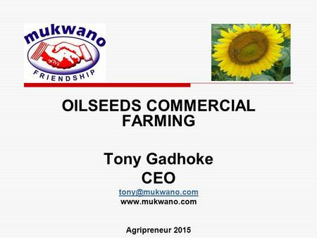 OILSEEDS COMMERCIAL FARMING