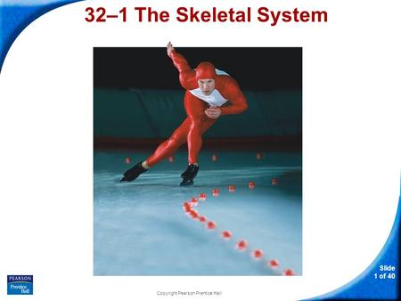 Slide 1 of 40 Copyright Pearson Prentice Hall 32–1 The Skeletal System.