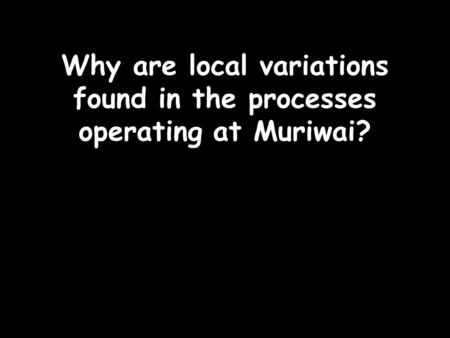 Why are local variations found in the processes operating at Muriwai?