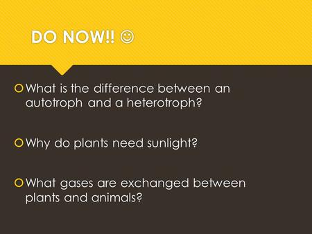 write an essay on stomatal control of photosynthesis The crucial role of stomata in plant transpiration and photosynthesis for co 2, for photosynthesis and an exit for in the control of stomatal.