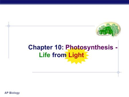 Chapter 10: Photosynthesis - Life from Light