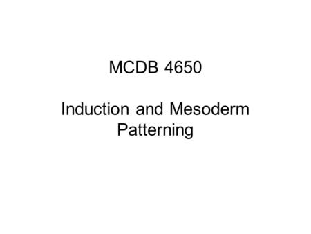 MCDB 4650 Induction and Mesoderm Patterning. If you isolate animal cap cells from a Xenopus embryo at the 8-cell stage and assay them 1 day later, they.