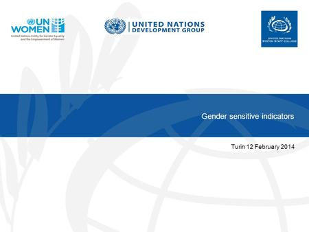 Gender sensitive indicators Turin 12 February 2014.