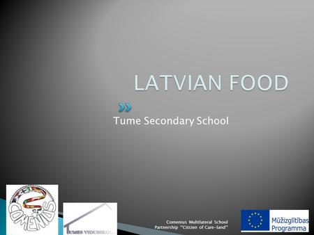 Tume Secondary School Comenius Multilateral School Partnership ''Citizen of Care-land''