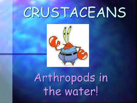 CRUSTACEANS Arthropods in the water! All Arthropods have: 1. Exoskeleton 1. Exoskeleton 2. Jointed Legs 2. Jointed Legs.