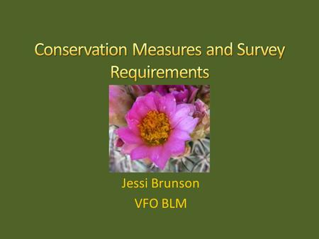 Jessi Brunson VFO BLM. Where do the Conservation Measures come from? & What do they say?