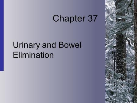 Chapter 37 Urinary and Bowel Elimination. 37-2 Copyright 2004 by Delmar Learning, a division of Thomson Learning, Inc. Physiology of Urinary Elimination.