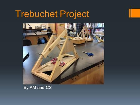 Trebuchet Project By AM and CS.