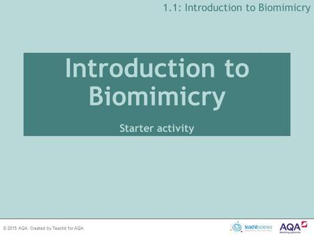 Introduction to Biomimicry