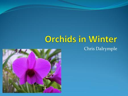 Chris Dalrymple. In the colder months, the requirements of orchids change Lower temperature Less light intensity Shorter days Less evapouration Slower.