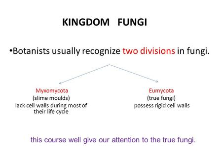 KINGDOM FUNGI Botanists usually recognize two divisions in fungi. Myxomycota (slime moulds) lack cell walls during most of their life cycle Eumycota (true.