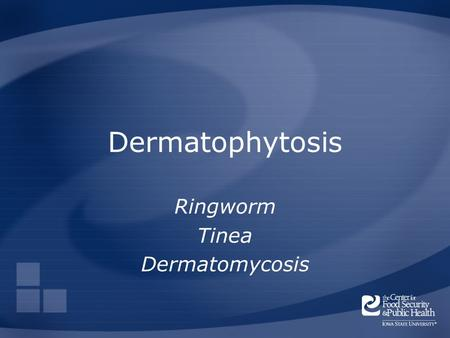 Dermatophytosis Ringworm Tinea Dermatomycosis. Overview Organisms History Distribution Transmission Disease in Humans Disease in Animals Prevention and.