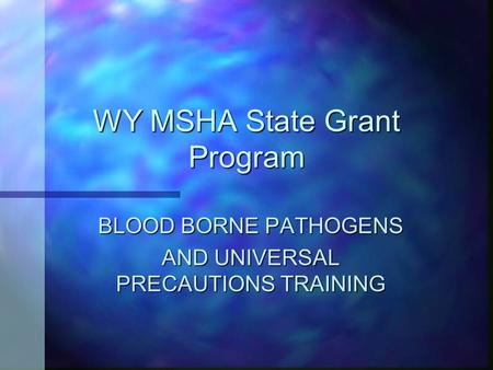 WY MSHA State Grant Program BLOOD BORNE PATHOGENS AND UNIVERSAL PRECAUTIONS TRAINING.