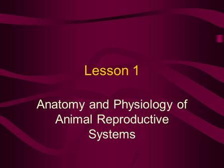 Lesson 1 Anatomy and Physiology of Animal Reproductive Systems.