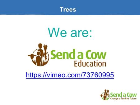 Trees We are: https://vimeo.com/73760995. Trees Why are Trees important to the world? Activity: What do trees give us?