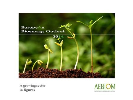 A growing sector in figures. europeAn bioenergy outlook 2014 ©AEBIOM - European Biomass Association The European Biomass Association (AEBIOM) released.