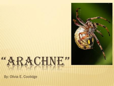"""Arachne"" By: Olivia E. Coolidge."