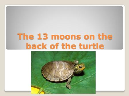 The 13 moons on the back of the turtle