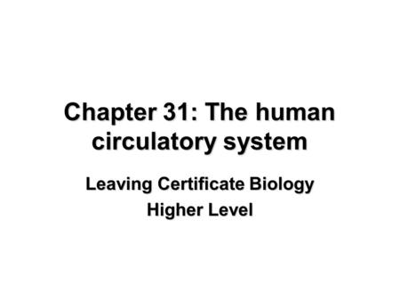 Chapter 31: The human circulatory system