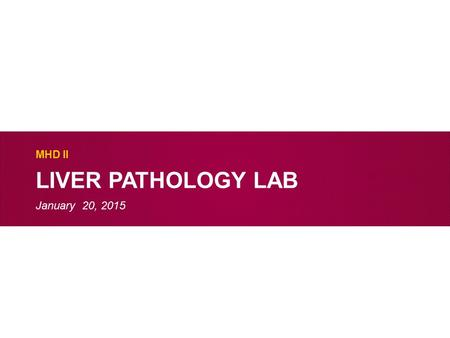 LIVER PATHOLOGY LAB MHD II January 20, 2015. Case 1 Describe the low power findings.