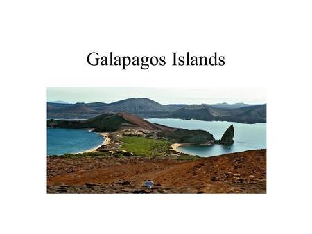 Galapagos Islands. Where are the Galapagos Islands located? Located in Pacific Ocean, North West of South America. 600 miles from Ecuador.