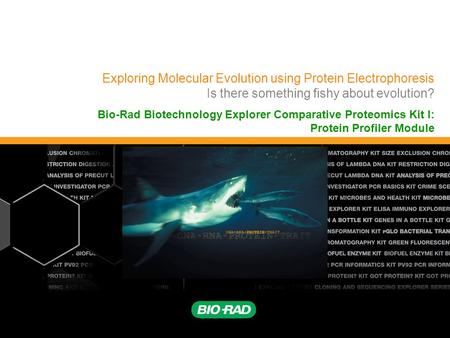 Exploring Molecular Evolution using Protein Electrophoresis Is there something fishy about evolution? Bio-Rad Biotechnology Explorer Comparative Proteomics.