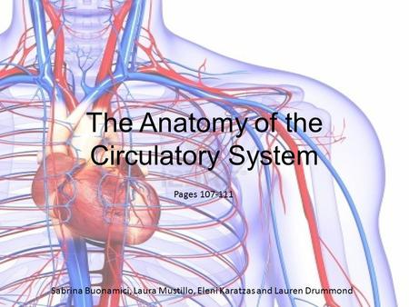 Pages 107-111 Sabrina Buonamici, Laura Mustillo, Eleni Karatzas and Lauren Drummond The Anatomy of the Circulatory System.
