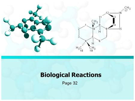 Biological Reactions Page 32. Reactions The major classes of macromolecules consist of carbohydrates, proteins, nucleic acids and lipids. Most macromolecules.
