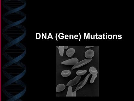 DNA (Gene) Mutations. What is a gene mutation? Parts of DNA will have a base (or more) missing, added, or incorrect A mistake in the genetic code Wrong.