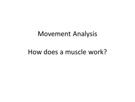 Movement Analysis How does a muscle work?. Human body is made up of bone, muscle, joints that together allow movement Understanding how a muscle works.