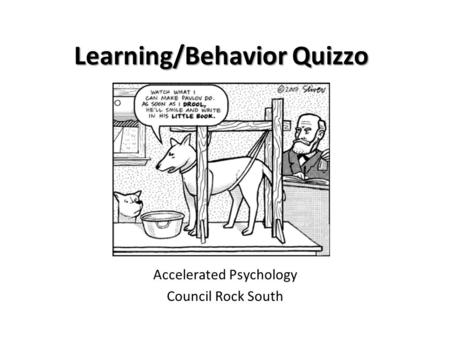 Learning/Behavior Quizzo