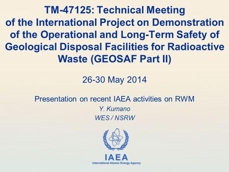 IAEA International Atomic Energy Agency TM-47125: Technical Meeting of the International Project on Demonstration of the Operational and Long-Term Safety.