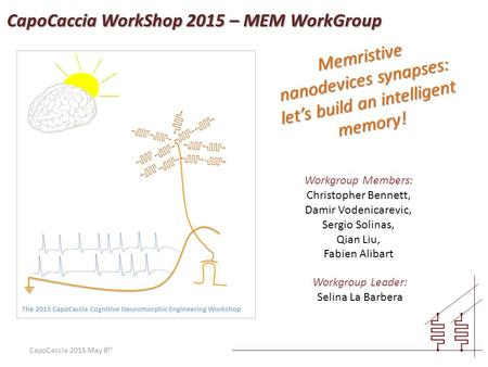 CapoCaccia 2015 May 8 th Memristive nanodevices synapses: let's build an intelligent memory! Workgroup Members: Christopher Bennett, Damir Vodenicarevic,