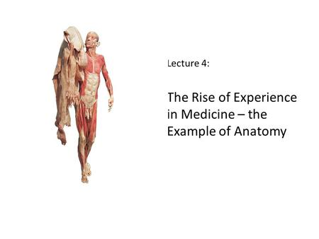Lecture 4: The Rise of Experience in Medicine – the Example of Anatomy.