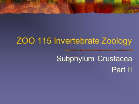ZOO 115 Invertebrate Zoology Subphylum Crustacea Part II.