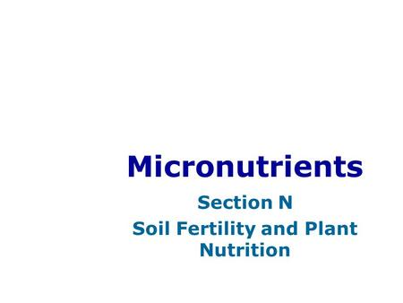 Micronutrients Section N Soil Fertility and Plant Nutrition.
