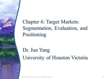 Chapter 6: Target Markets: Segmentation, Evaluation, and Positioning